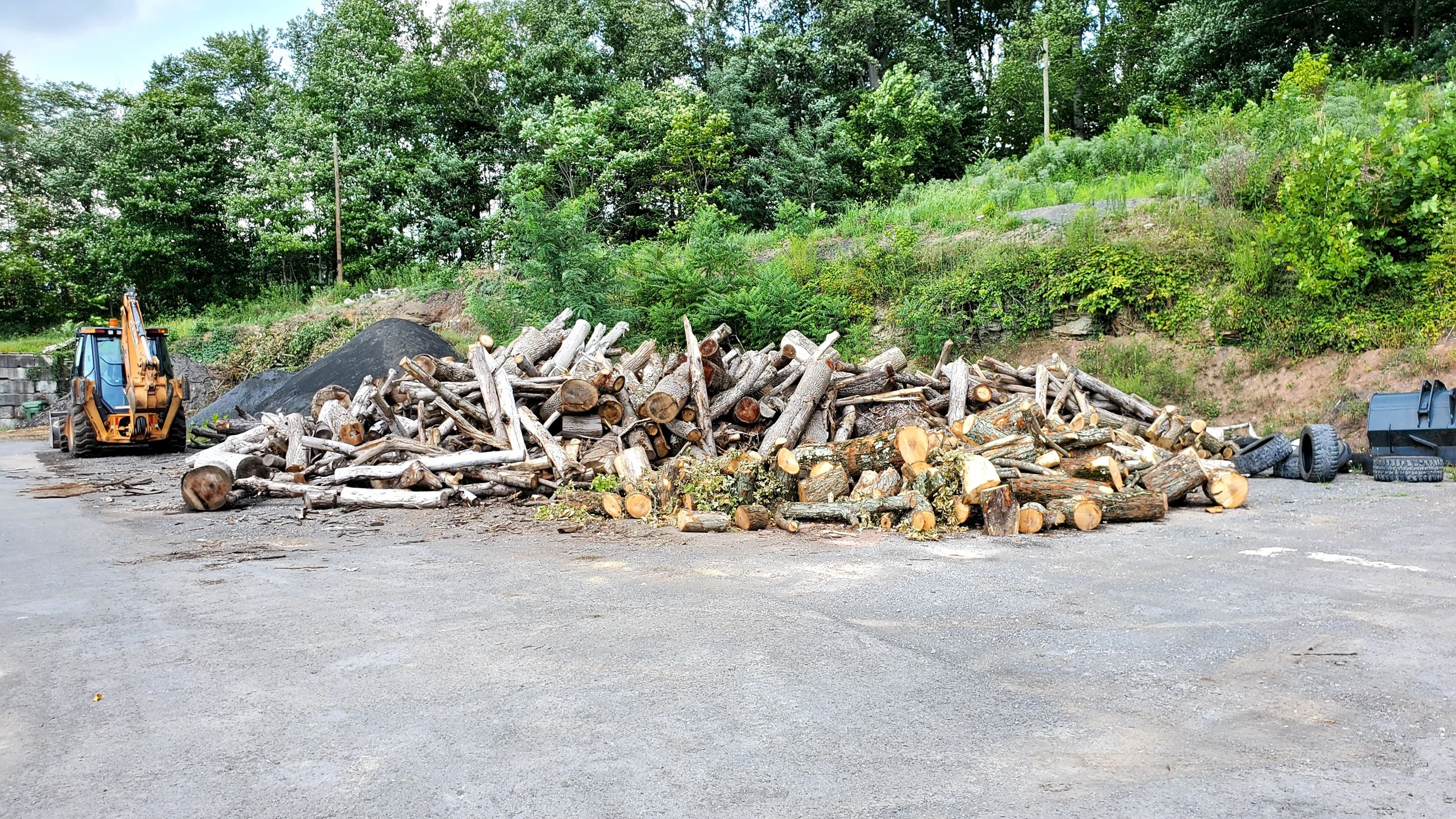 A picture of firewood that is available at the City Garage during the city's release of materials